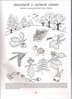 Top quality Silicone Tattoo Practice Skin with butterflys pattern Soft skin for permanent makeup practice tattoo learners Forest Crafts, Tattoo Practice Skin, Tree Templates, Autumn Activities For Kids, Christmas Illustration, Skin So Soft, Preschool Activities, Children Activities, Science And Nature