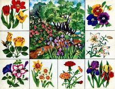 Teaching Plants, Teaching Kids, Kids Learning, Math For Kids, Science For Kids, Infant Activities, Preschool Activities, Fruit Flowers, Elementary Science