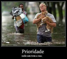 Prioridade, cada um tem a sua... #gatos #proteja #salve
