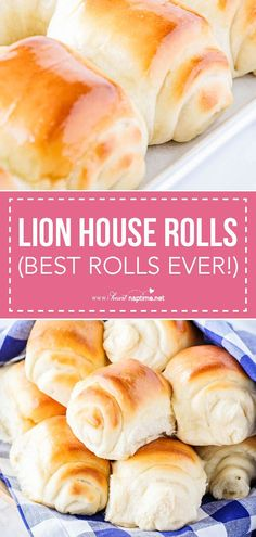 These lion rolls are the best ever! Soft, buttery and delicious. These lion rolls are the best ever! Soft, buttery and delicious. Homemade Dinner Rolls, Dinner Rolls Recipe, Homemade Breads, Recipes Dinner, Beignets, Lion House Rolls, Thanksgiving, Bread Rolls, Yeast Rolls