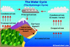 The Watercycle - EnchantedLearning.com Water Cycle For Kids, Water Cycle Project, Science Resources, Science Lessons, Science Projects, Science Notes, Science Videos, Science Notebooks, Science Experiments