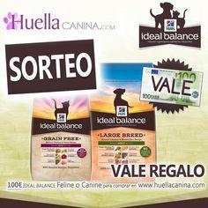 SORTEO de VALE REGALO 100€ Hill's y  HuellaCanina.com