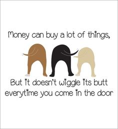 Money can buy a lot of things but it doesn't wiggle its butt when you come in the door