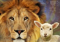Beautiful...The Lion and the Lamb
