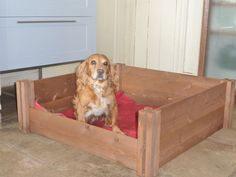 Fsc Wooden Dog Puppy Whelping Box Bed High Quality