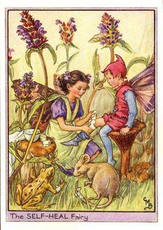 Sueños de niña: Hadas de las Flores Silvestres del borde del camino