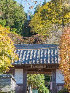 大渕寺の山門から背後の護国観音をのぞむ