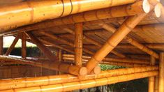 Bamboo Roof, Bamboo Plants, Bamboo Construction, Construction Materials, Deck Footings, Bamboo House Design, Bamboo Building, Bamboo Architecture, Diy Home Crafts