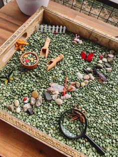 Toddler Sensory Bins, Sensory Boxes, Sensory Table, Baby Sensory, Toddler Play, Sensory Play, Toddler Crafts, Preschool Crafts, Farm Sensory Bin