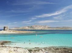 Stintino and Isola dell'Asinara, Sassari Sardegna Italy