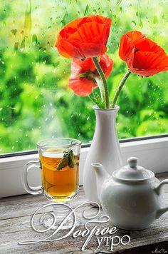 Анимация Кружка с чаем, чайник, маки в вазе на окне на фоне дождя на размытом…