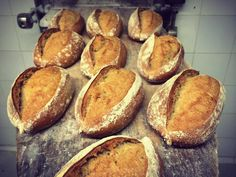 A fresh batch | Courtesy of Cloudstreet Bakery