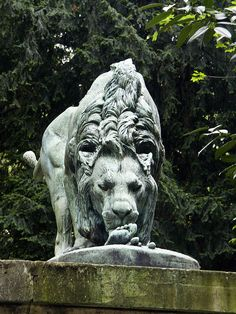 Lion, Jardin des Plantes, Paris.    Make sure you look at the meal he is completing! I assume it's a cautionary tale as it's very close to the zoo!