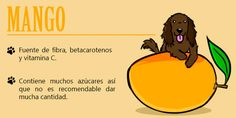 ¿Compartes comida con tu perro? 15 deliciosas frutas que amas y que pueden comer juntos | aweita.pe