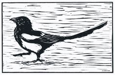 Little Magpie Linocut Relief Print, Hand Pulled Fine Art, Limited Edition, Printmaking Original