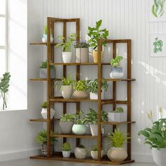 Plant Shelves, Display Shelves, All You Need Is, Indoor Plants, Indoor Outdoor, Indoor Garden, Outdoor Decor, Slatted Shelves, Wood Plant Stand