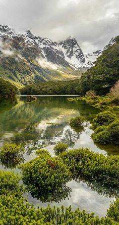 Lake Mackenzie, Routeburn Track, Fiordland National Park, NZ Best hiking trips New Zealand #newzealandhikes #tuitrip #rimutrip
