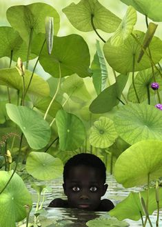 Ruud Van Empel - Dutch photographer Ruud Van Empel blends subject and background in a combination of collage, photography, and photo editing. He merges dream and exoticism and invokes an unlikely journey in the most distant countries.