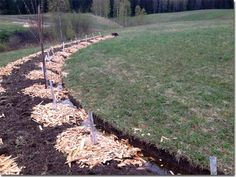 Setting up a Permaculture Farm in Sweden (Ridgedale Permaculture, 2014)