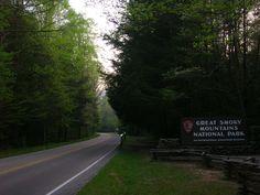 great smoky mountains national park - Pesquisa Google