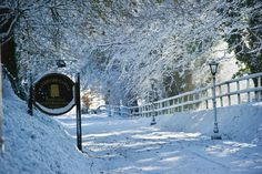 Enjoy a scenic drive throught the meandering road that connects our magnificent Century castle to the dock where you depart the short Ferry ride from the mainland Waterford Castle, Castle Hotels In Ireland, 16th Century, Winter Season, Winter Wonderland, Island, Outdoor, Winter Time, Outdoors