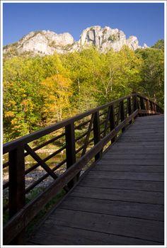 Day trip/weekend getaway to Seneca Rocks, WV
