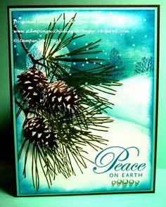 winter scene behind pines