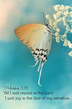 Habakkuk 3:18 Yet I will rejoice in the Lord, I will joy in the God of my salvation