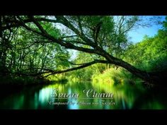 Relaxing Celtic Music - Spring Charm  by Adrian Von Ziegler