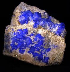 Nosean, Sodalite, Nepheline, Phlogopite, Calcite and Pyrite -...  via Bijoux et Mineraux