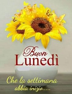 Italian Memes, Good Morning, Cristiani, Anna, Ely, Dsquared2, Lavender, Yellow, Brown