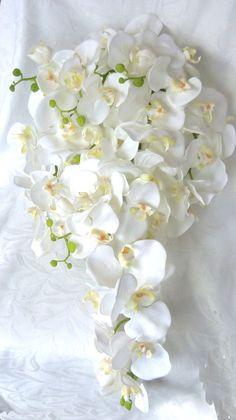 Cascade white Orchid Bouquet & Boutonniere phalaenopsis orchid bouquet tropical wedding bouquet