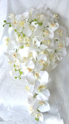Hey, I found this really awesome Etsy listing at https://www.etsy.com/listing/119323782/cascading-white-orchid-bouquet