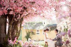 Korean Studio Pre-Wedding Photography: Floral by Gaeul Studio on OneThreeOneFour…