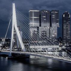 """And in that moment I swear we were infinite."" #Rotterdam #Erasmusbrug #visitrotterdam #Instawalk010 #Rottergram010 #GemeenteRotterdam #RTVRijmond #Dutch #Holland #Nethelands #Loves_Netherlands #Dutch_Connection #Wonderful_Holland #Super_Holland #IgersHolland #IGHolland #roffurban #rotturban #Night #HDR #NightHDR #LongExposure #Beauty #Lights #Sky #Nikon #Triggertrap"
