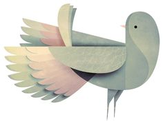 Andrew Lyons' Bird Illustrations