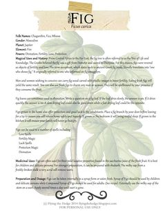 Herbarium: Fig. Magical and Medicinal uses of Figs. Free BOS page included.