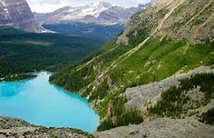 Lake O'Hara Yoho National Park Canada - Bing Images