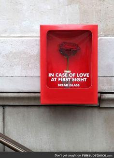 Only when true love strikes