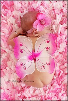 Baby Fairy Wings by CaliAnnCreations on Etsy, $5.99