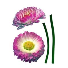 Brewster FS17023 Variable Sized - Daisy - Self-Adhesive Repositionable Vinyl Wall Decal - Set of 6