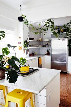 House Tour with Becca Barnet for Design*Sponge Kitchen Dining, Kitchen Decor, Cool Shelves, Gravity Home, Room Of One's Own, Artistic Installation, Historic Homes, Kitchen Interior, Home Kitchens