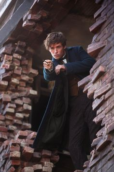 Fantastic Beasts and Where to Find Them Will No Longer Be 3 Movies