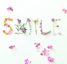 Smile its almost summer! we love this pretty set up from Wallpaper Tumblr Lockscreen, Iphone Wallpaper, Flower Words, Flower Quotes, Flower Art, Belle Image Nature, Image Nature Fleurs, Flower Typography, Floral Letters