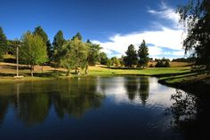 Pullman, WA : The Pond at Sunnyside Park in Pullman, WA