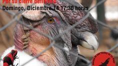 Pétition · Pedimos el cierre del Zoológico Llastay de la Ciudad de La Rioja · Change.org