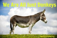 We Are All Just Donkeys -  this is not an insult. Come see how you and me are just like the donkey Jesus rode upon on Palm Sunday.