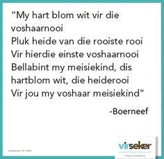 BOERNEEF (Izak van der Merwe)