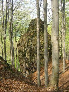 Thirring-szikla és  (Turul vagy Táltos) körút (Pilisszentkereszt közelében 1.7…