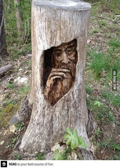 Tree stump carving